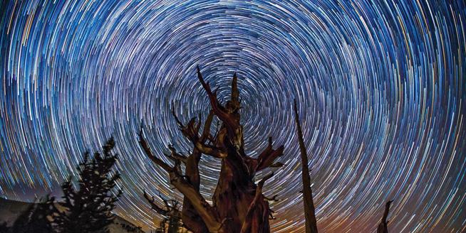 美國攝影師拍攝絕美星空 呼吁關注城市污染