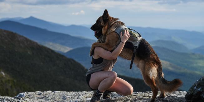 德牧愛跟美國女主人旅行 一人一狗浪漫遊