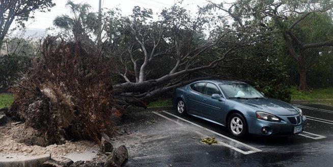 """颶風""""艾爾瑪""""登陸美國佛羅裏達"""