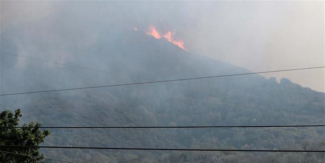 美國加州森林大火持續蔓延