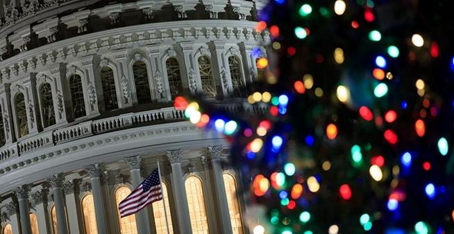 美國國會山點亮聖誕樹 五彩繽紛閃耀夜空