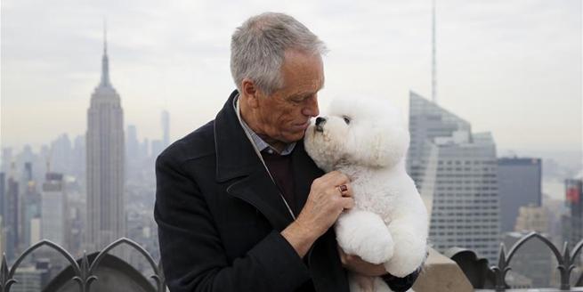 """最佳秀犬""""登頂""""紐約洛克菲勒中心"""