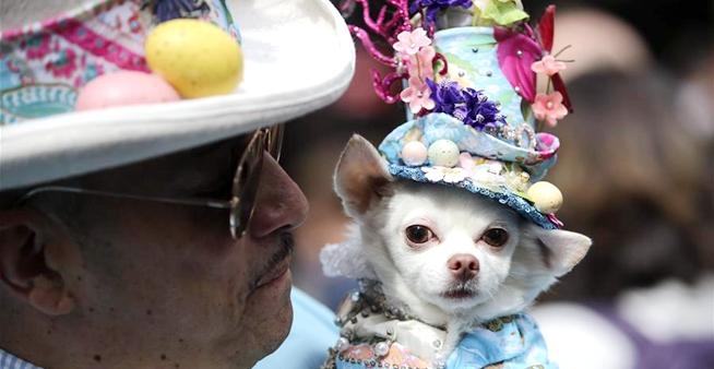 紐約舉行復活節花帽遊行