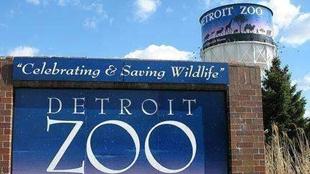"""倡導環保 美動物園擬給遊客發""""糞便"""""""